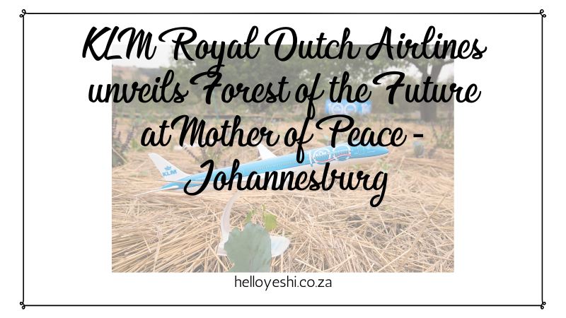 KLM Royal Dutch Airlines Unveils Forest Of The Future At Mother of Peace In Johannesburg