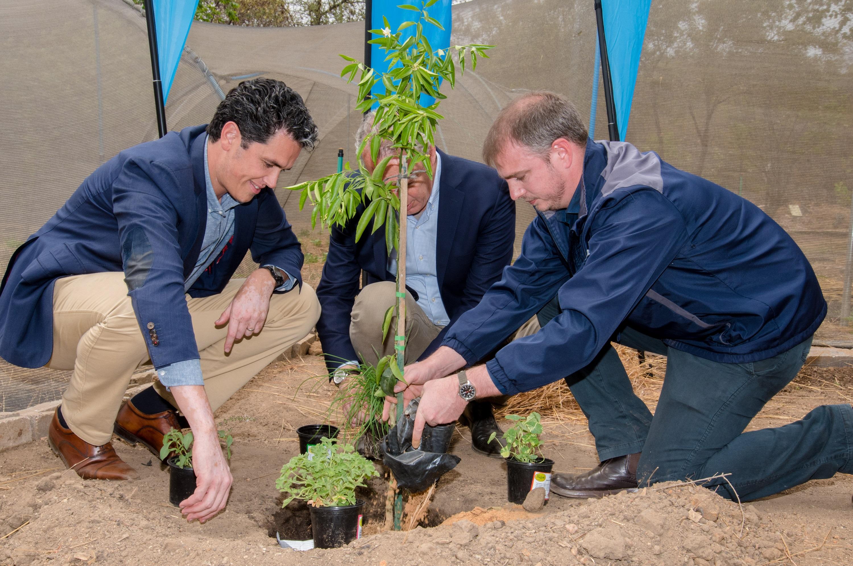 Wouter Vermeulen and Erik Swelheim Planting A Tree